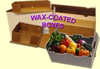 coatedbox